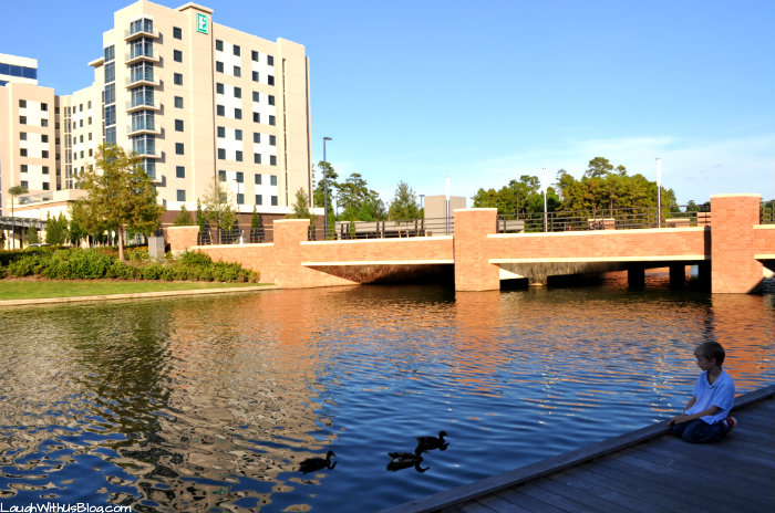 Ducks and water Embassy Suites The Woodlands #PrettyGreat