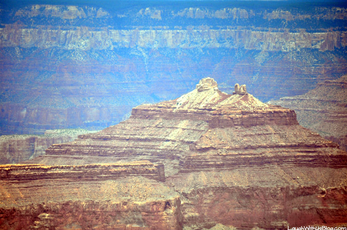 grand-canyon-snoopy-rock