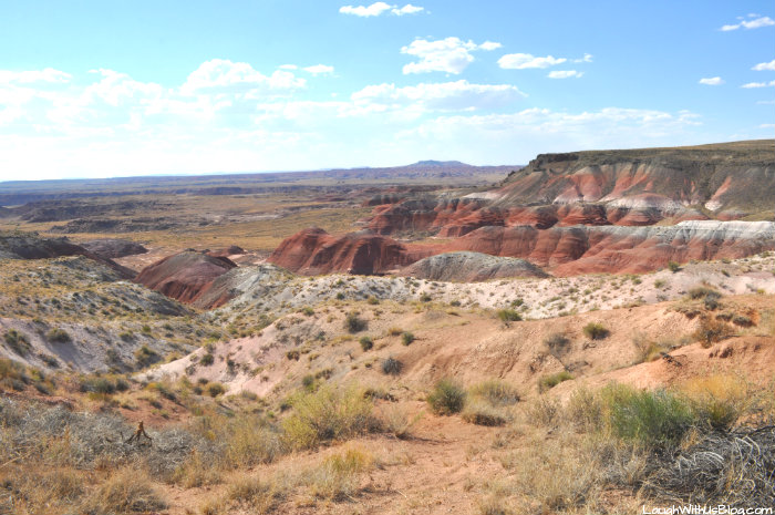 painted-desert-lookout