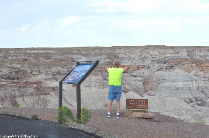 petrified-forest-national-park-windy-spot