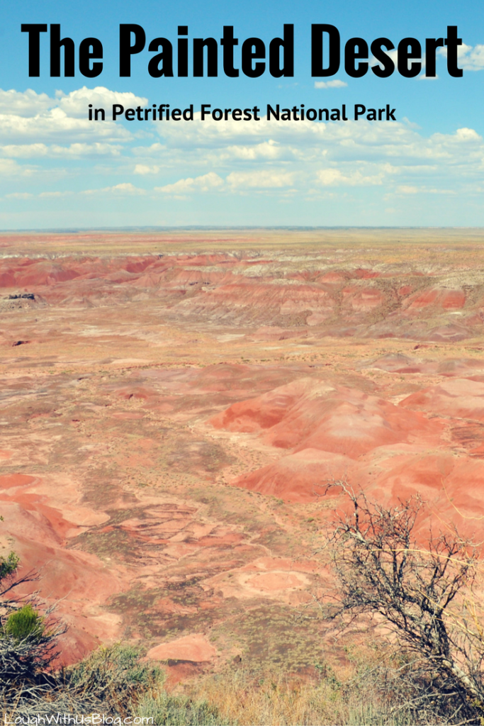the-painted-desert