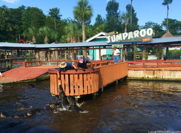 gatorland-jumparoo