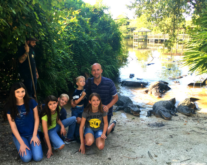gatorland-close-encounter