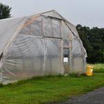 Lomax Farm