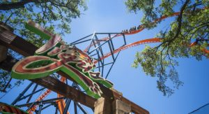 Busch Gardens Tampa Tigirs Roller Coaster