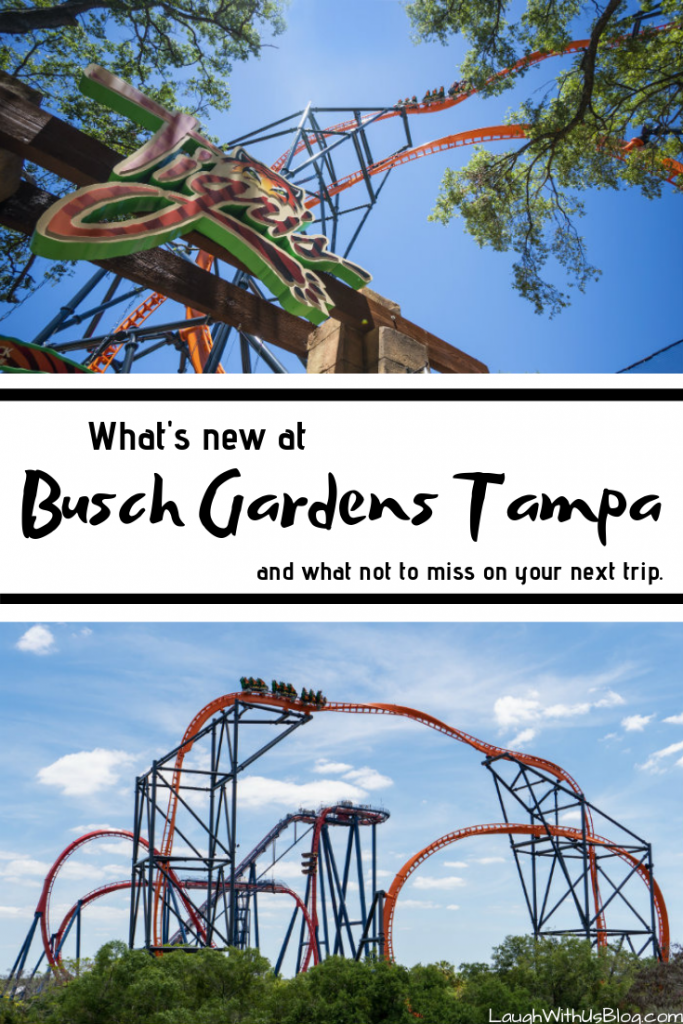 What's new at Busch Gardens Tampa
