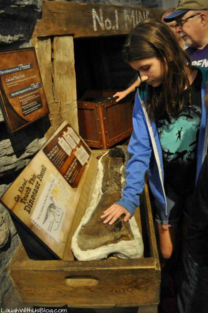 Creation Museum touch a dinasaur bone