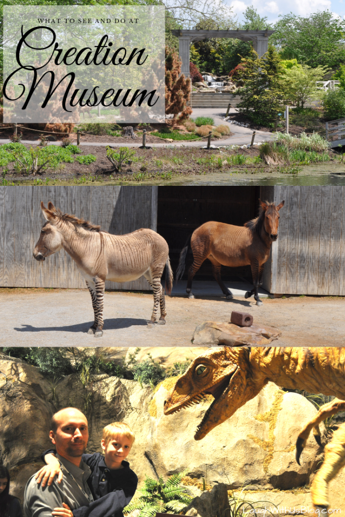 What to see and do at the Creation Museum