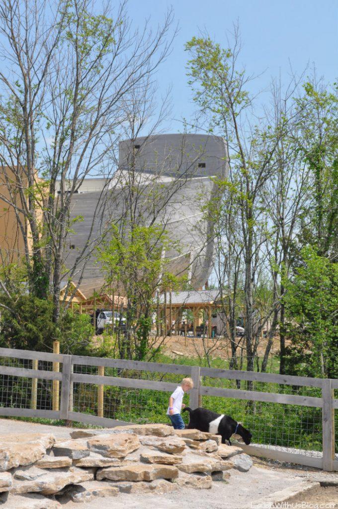 Ark Encounter Petting Zoo