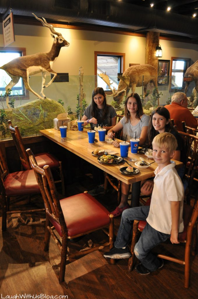 Ark Experience Family Buffet
