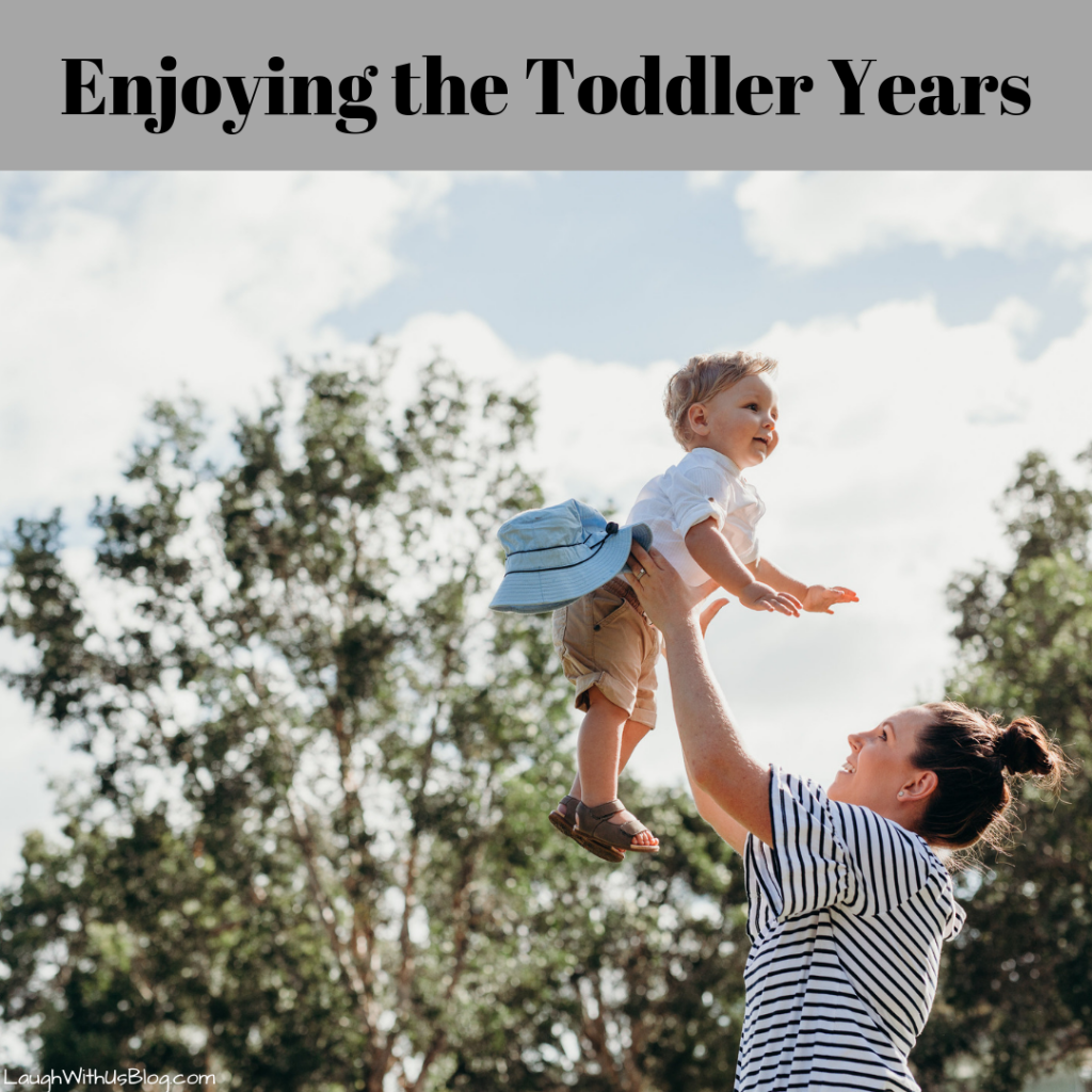 Enjoy the Toddler years